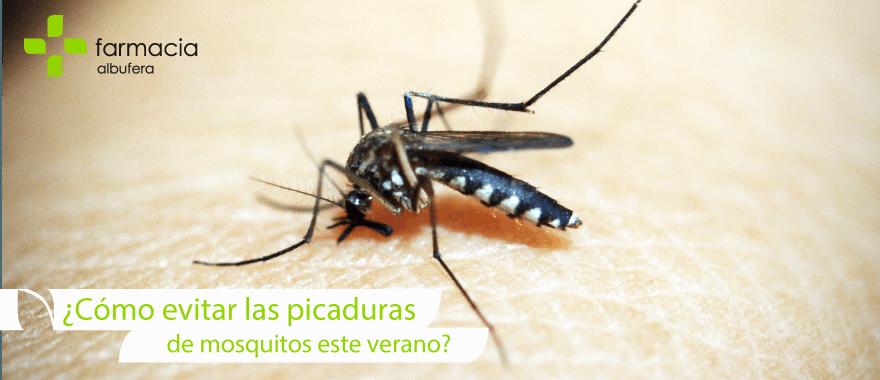 Repelentes para evitar las picaduras de mosquitos